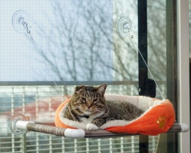 Kitty Kot Cat Bed